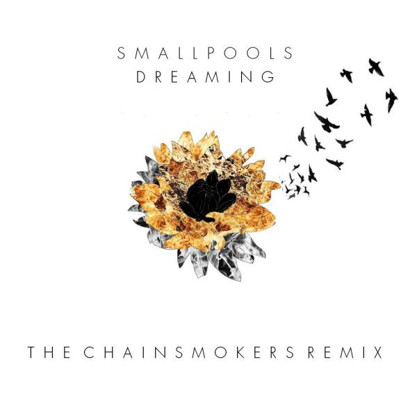 Smallpools- Dreaming (The Chainsmokers Remix) MP3